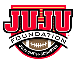 JuJu Foundation